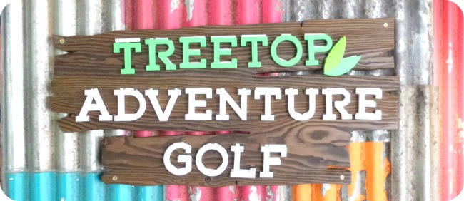 Treetop Adventure Golf 1