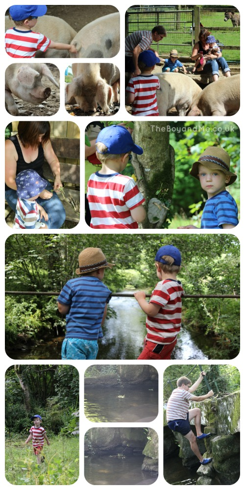 Country Kids of all ages at Coombe Mill 2