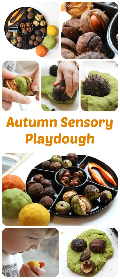 Autumn Sensory Playdough