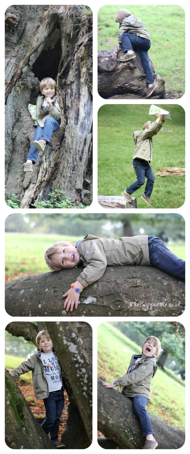 Exploring in Dyrham Park