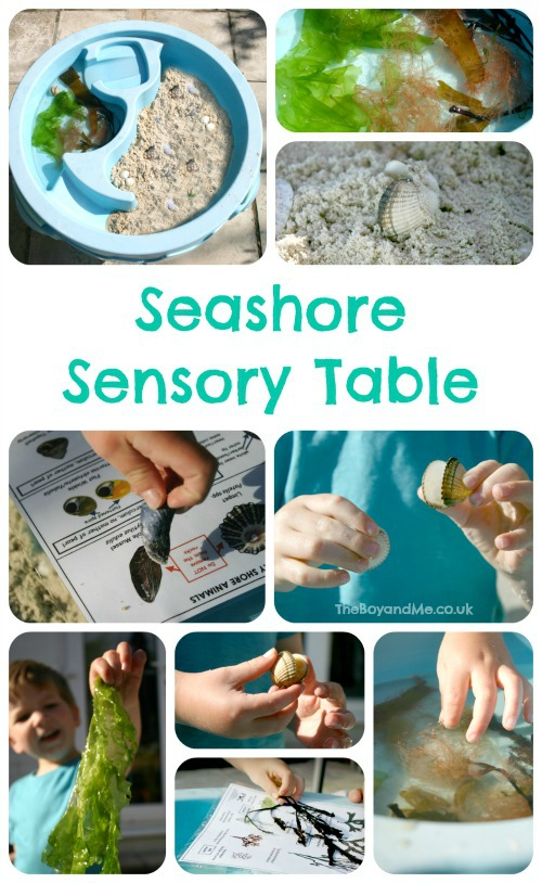 Seashore Sensory Table