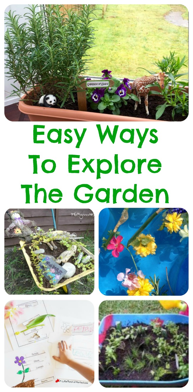 Easy Ways To Explore The Garden