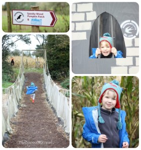 Hendrewennol Maize Maze