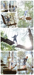 Go Ape Junior (New Forest)
